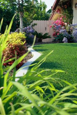 Hodinový manžel a řemeslník – údržba zahrady